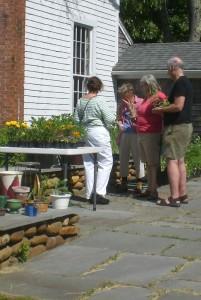 Chosing plants.