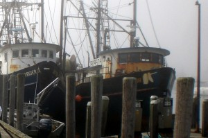 Foggy morning in Menemsha for Blessing